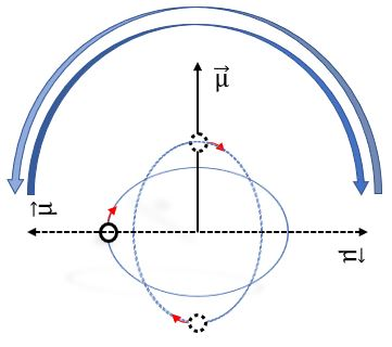 Proton oscillation